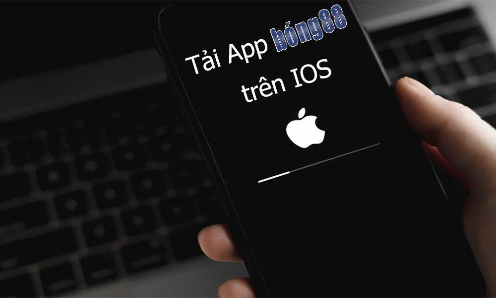 Cách tải App Bong88 trên IOS